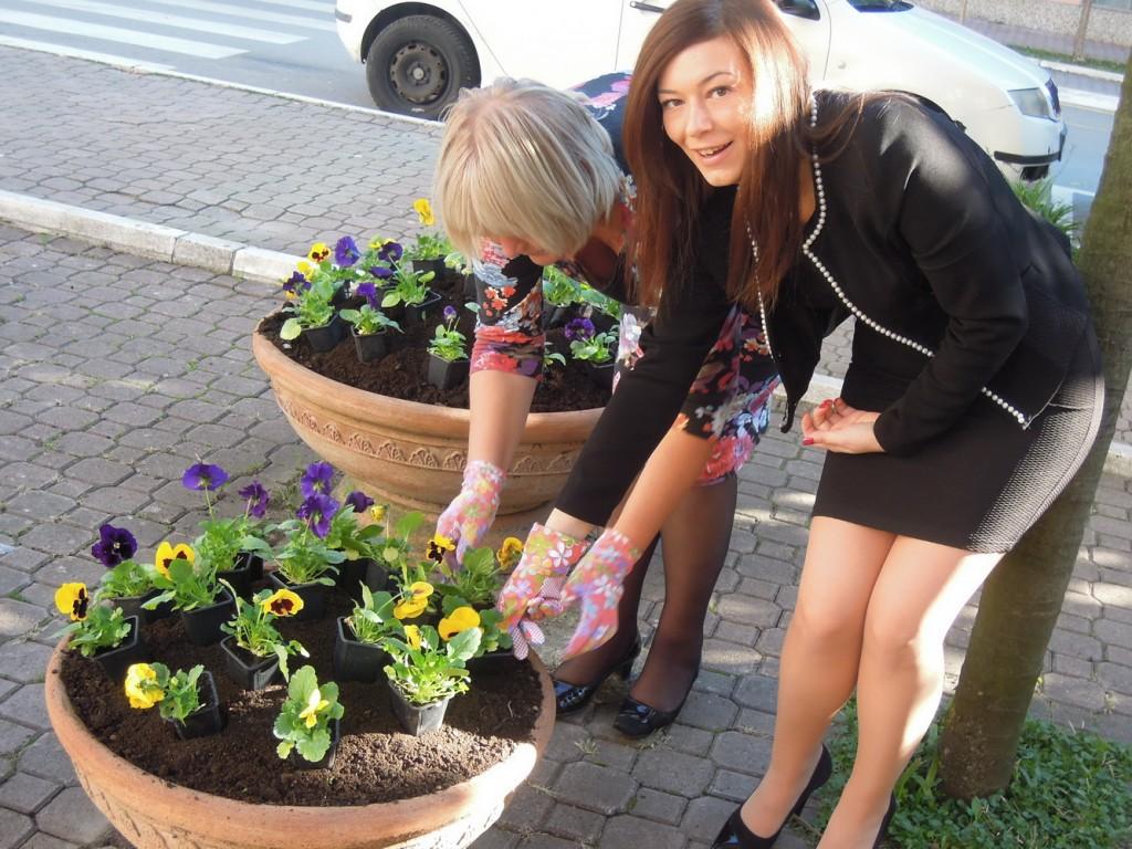 TOT - Sade cvijeće povodom Dana opštine Tivat 2014
