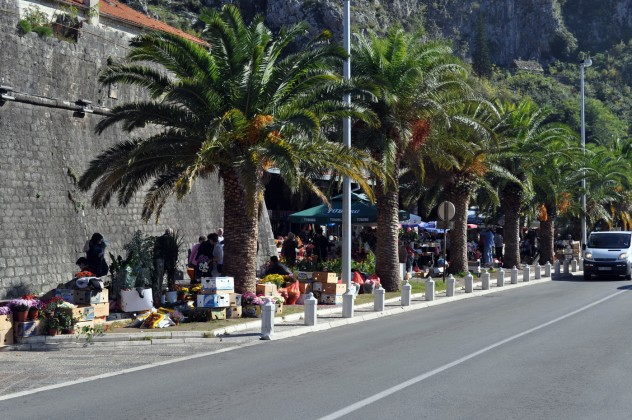 Kotorska pijaca - Boka News