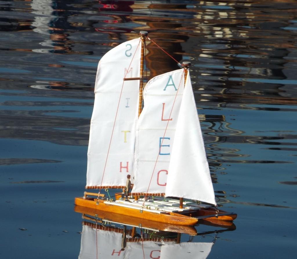 Model broda