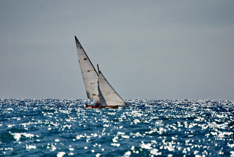 Regata barke tip Arsenalka