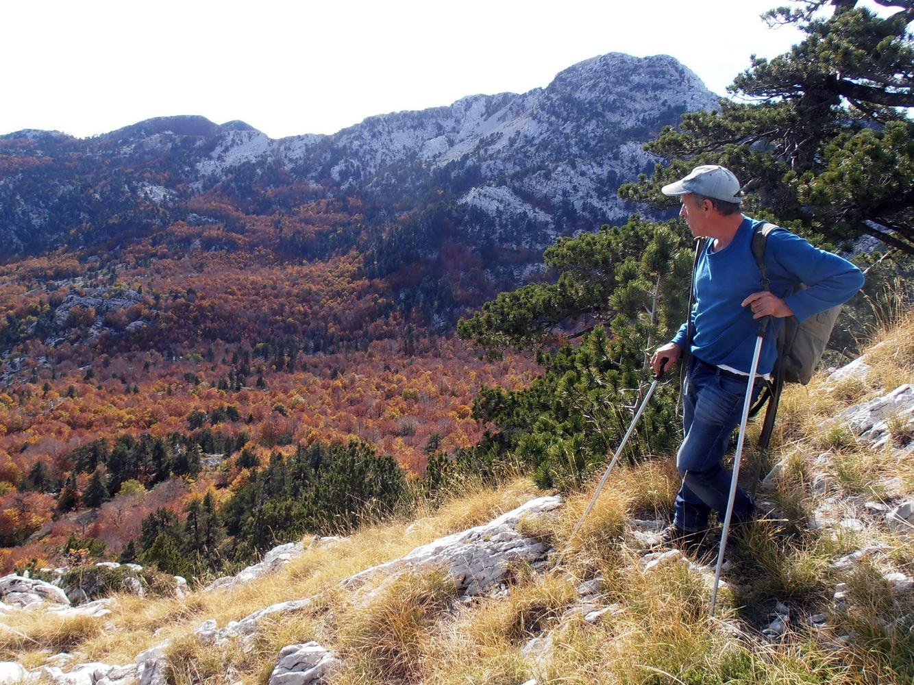 Otvorena nova planinarska staza na Orjenu