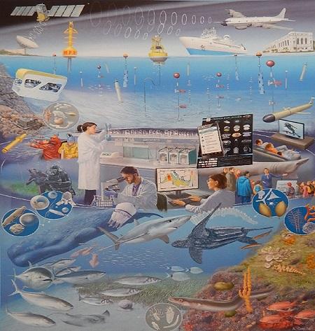 Monitoring mora