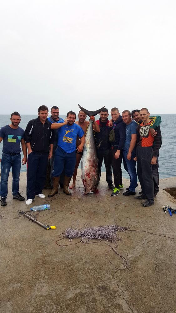 DRUGO MJESTO 2015 - Adnan Sejdić - tuna 86kg