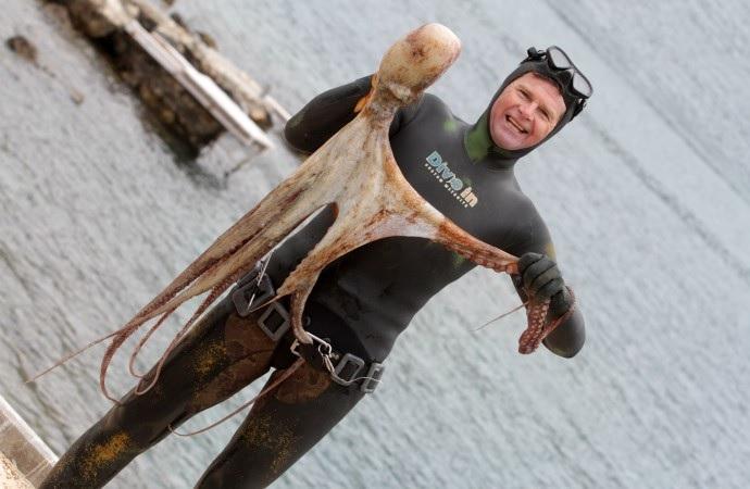 Tonči Đuho - hobotnica