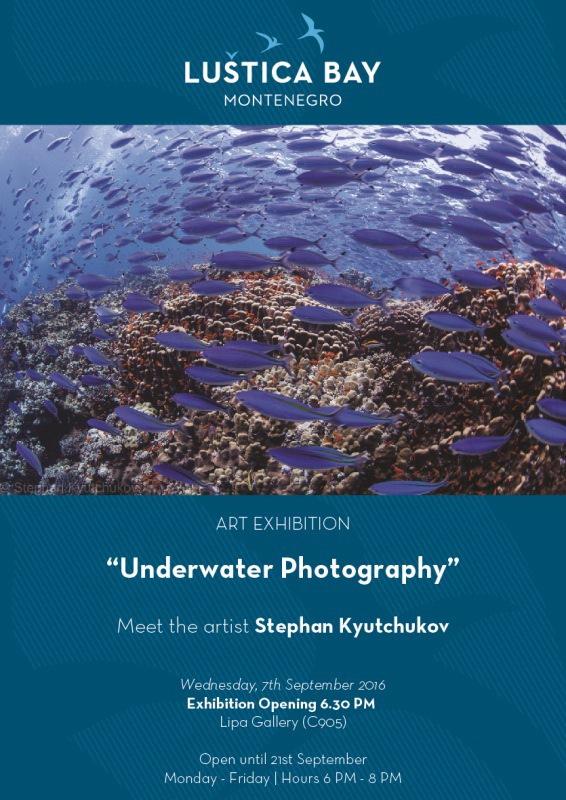 Izlozba Stephan Kyutchukov