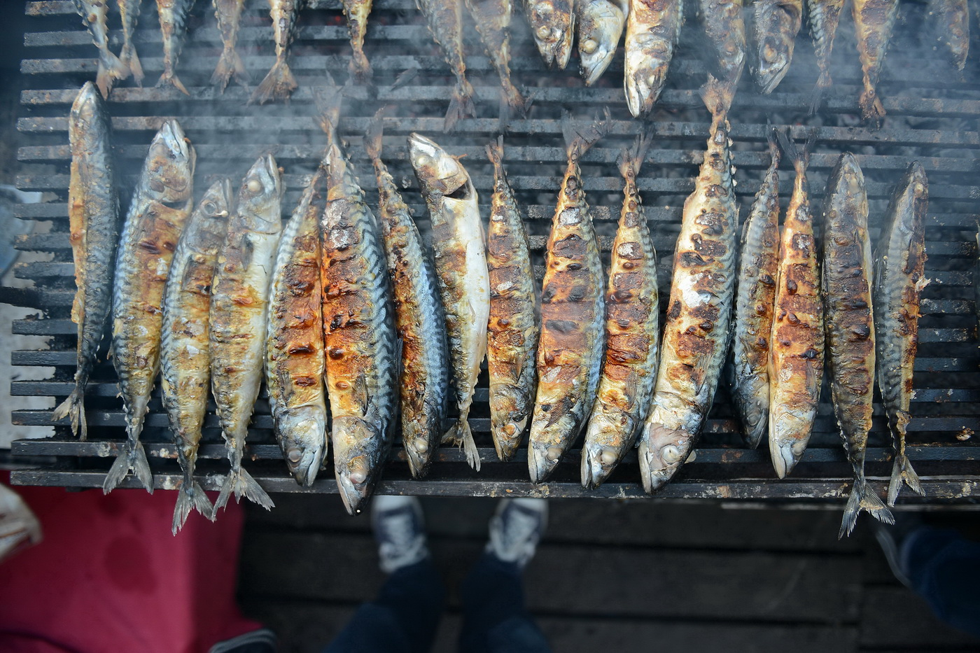 Širuni - riba