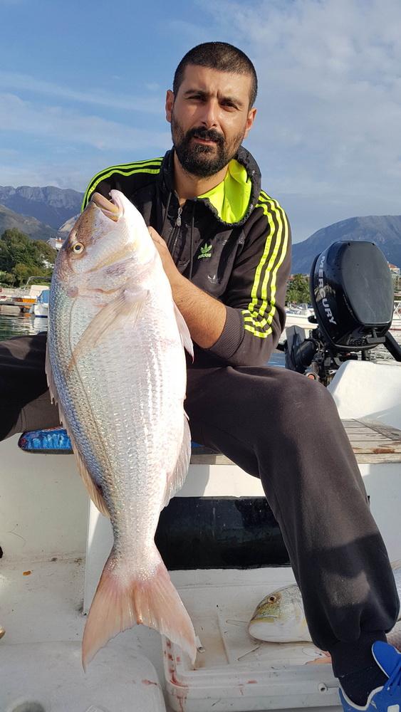 Novembar drugo mjesto-zubatac 8,1-kg Nikola Marović