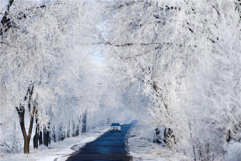 Zima-foto Hina