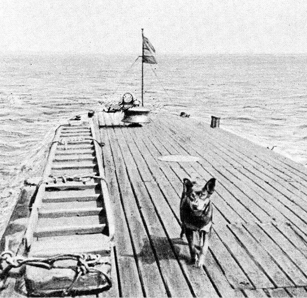 Maskota-pas-tango-na-palubi-podmornice Monge
